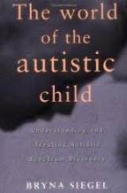 the world of the autistic child