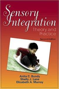 sensory integration theory and practice